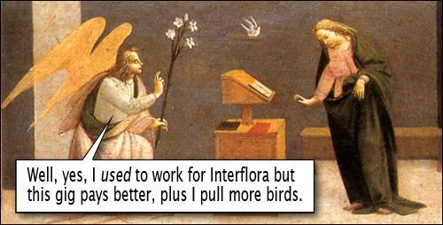 Pulling Birds