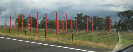 Some Red Poles